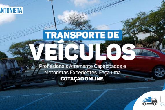 Carreto Vila Antonieta